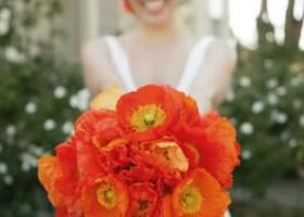 Red Poppy Bouquet Closeup