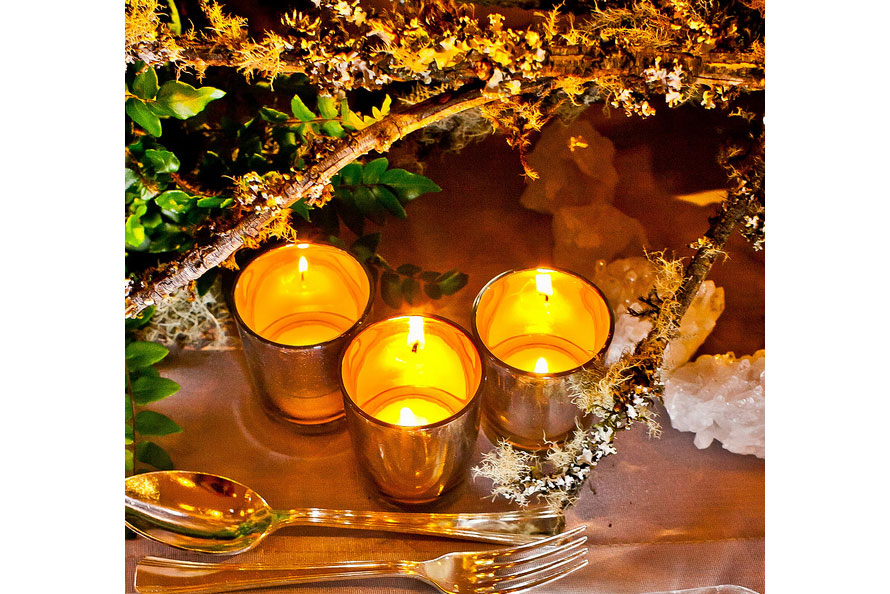 Wintery-Tablescape,-detail_9522344722_m