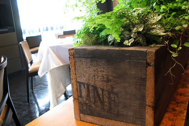 Ame-fern-planting-reclaimed-wood,-detail_9162582084_m