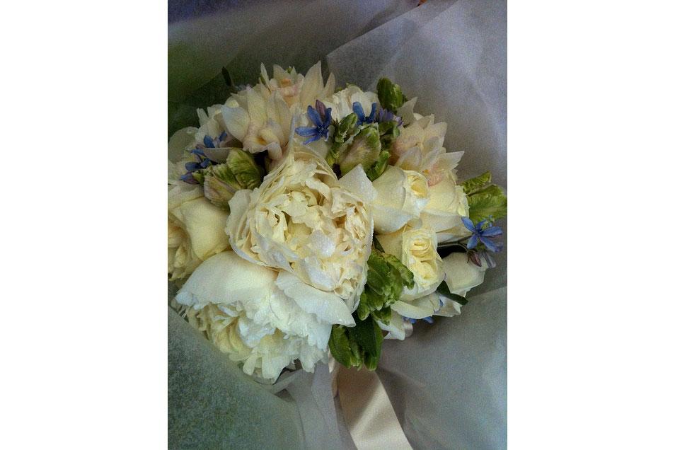 Spring-bridal-as-presented_9161588535_m