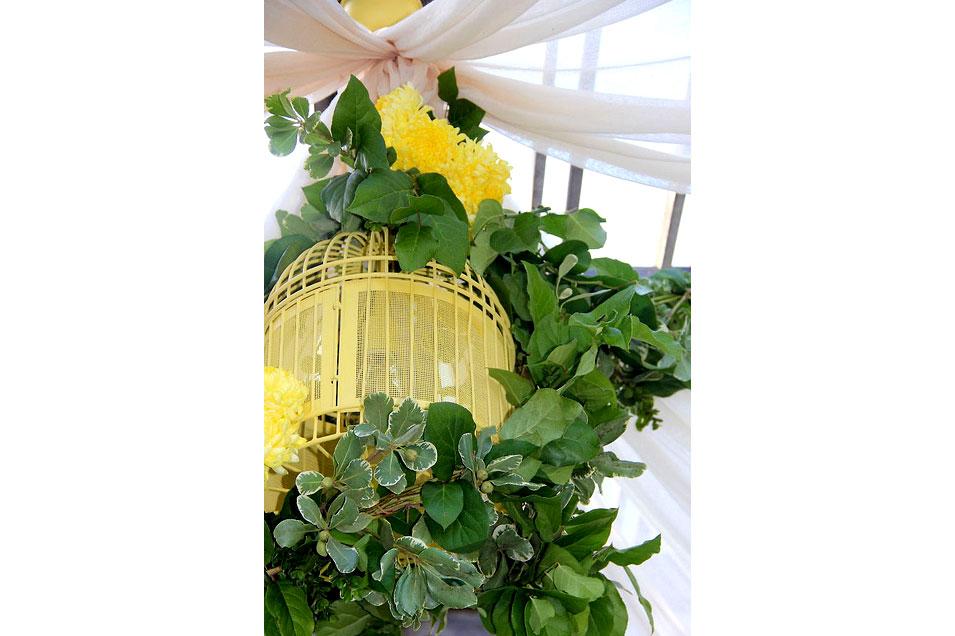 Tennessee-Valley-Backyard-Wedding-birdcage-chandelier-detail_9945070466_m