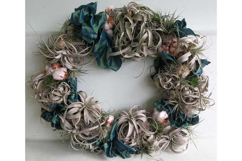 TillandsiaCotton-Living-Wreath,-MingleJingle-2012_9828626713_m
